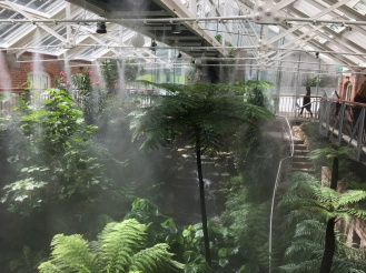 Greenhouse (Bridget Bartos)