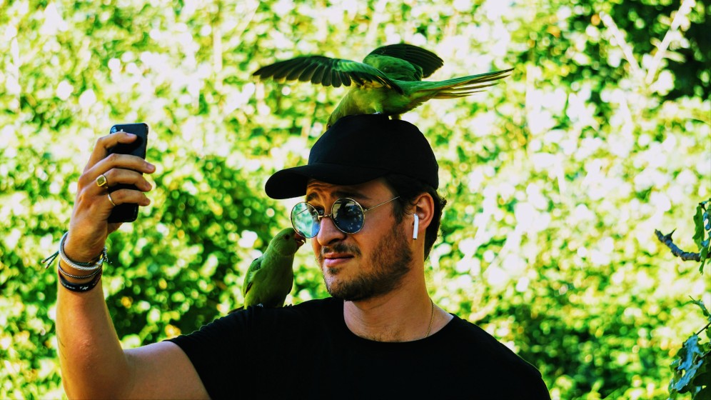 Someone takes photos with birds